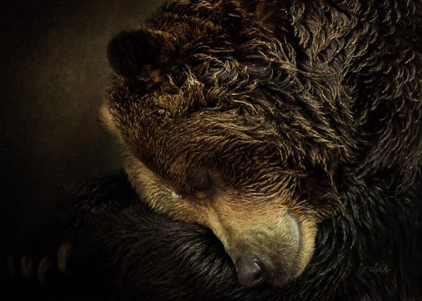 Painting - Rest - Wildlife Art by Jordan Blackstone