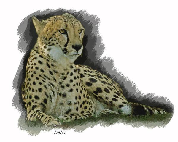 Digital Art - Resting Cheetah by Larry Linton