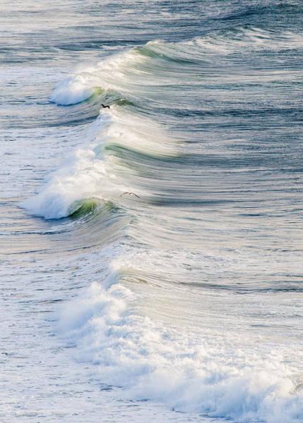 Photograph - Restless Surf by Robert Potts