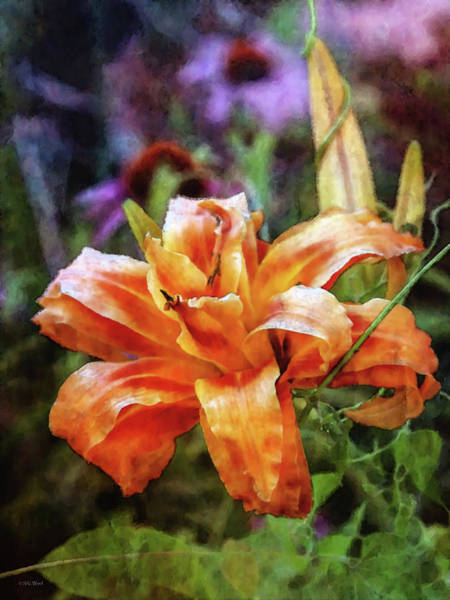 Photograph - Restrained 3649 Idp_2 by Steven Ward