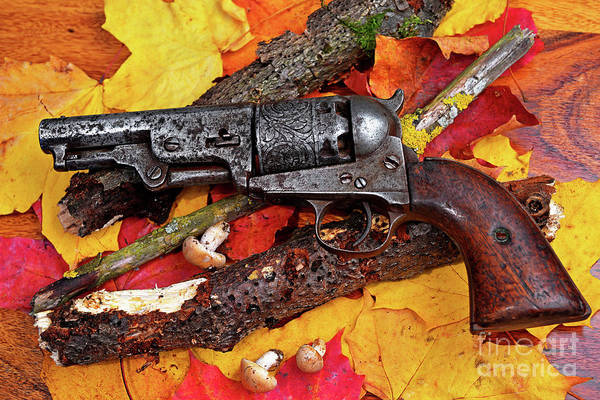 Cowboy Action Shooting Photograph - Retired Autumn Forager by Wilf Doyle