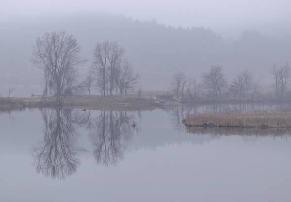 Photograph - Retreat Meadows Fog by Tom Singleton