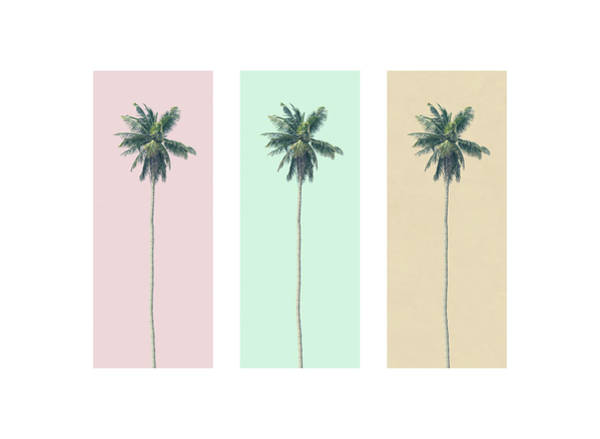 Wall Art - Photograph - Retro Palms by Andrew Paranavitana