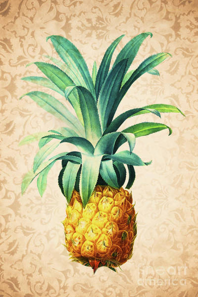 Wall Art - Painting - Retro Pineapple by Delphimages Photo Creations