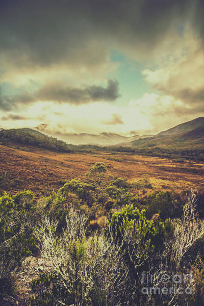 Location Photograph - Retro Scenic Wilderness by Jorgo Photography - Wall Art Gallery