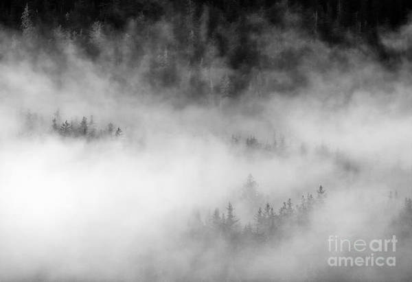 Juneau Photograph - Revealed By The Light by Mike Dawson