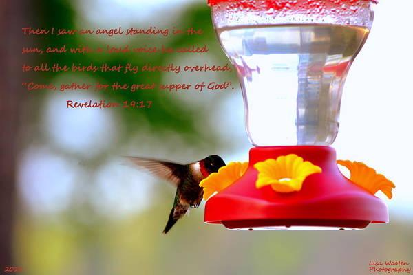 Photograph - Revelation 19 17 Hummingbird by Lisa Wooten