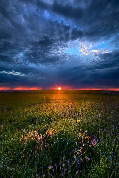 Photograph - Revelations by Phil Koch