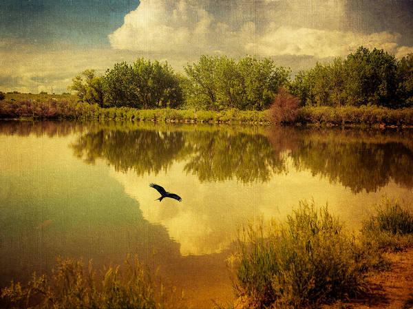 Photograph - Reverie by Janice Bennett