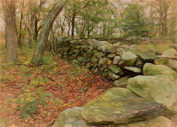 Photograph - Reverie With Stone by Nancy De Flon