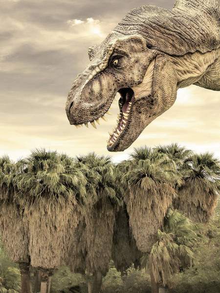 Wall Art - Photograph - Valley Of The Dinosaurs Coachella Valley by William Dey