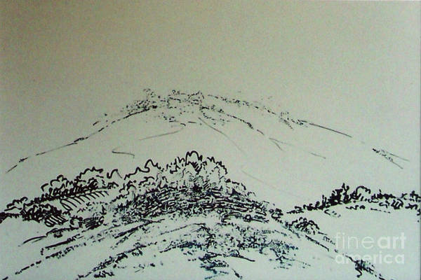 Drawing - Rfb0211-2 by Robert F Battles