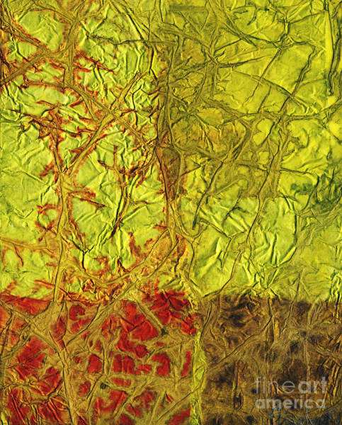 Color Block Mixed Media - Rhapsody Of Colors 40 by Elisabeth Witte - Printscapes