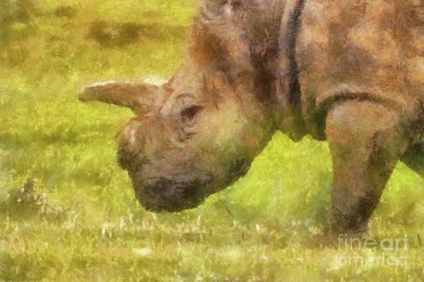 Mono Painting - Rhino by Sarah Kirk