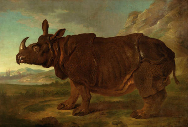 Wall Art - Painting - Rhinoceros by Jean-Baptiste Oudry
