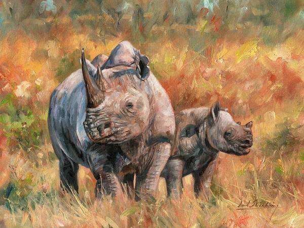 Rhino Painting - Rhinos by David Stribbling