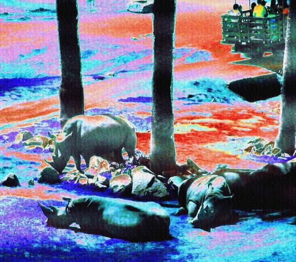 Rhinocerus Photograph - Rhinos Having A Picnic by Abstract Angel Artist Stephen K