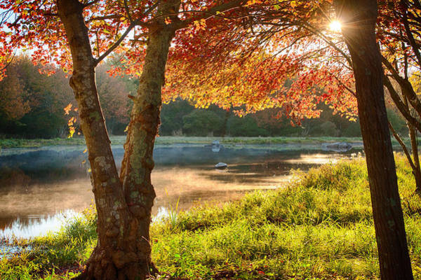 Photograph - Rhode Island Fall Foliage Over Misty Pond by Jeff Folger
