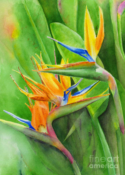 Tropical Flower Painting - Rhonica's Garden by Karen Fleschler