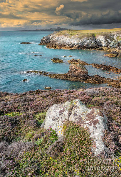 Sea Stacks Wall Art - Photograph - Rhoscolyn Head by Adrian Evans
