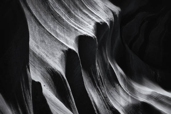 Photograph - Ribbed Black And White by Nicholas Blackwell