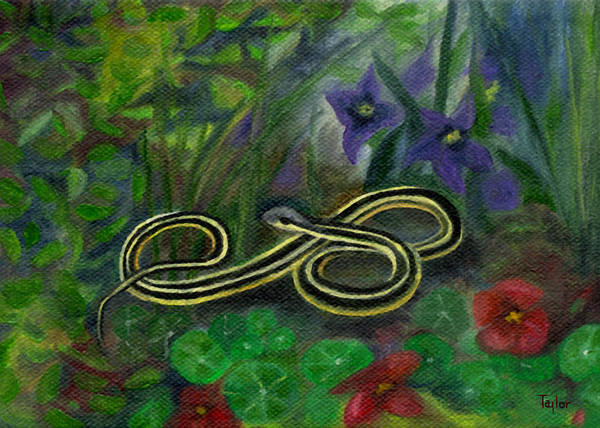 Ribbon Snake Art Print