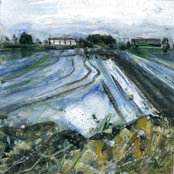 Delta Mixed Media - Rice Fields by Nuria Vives