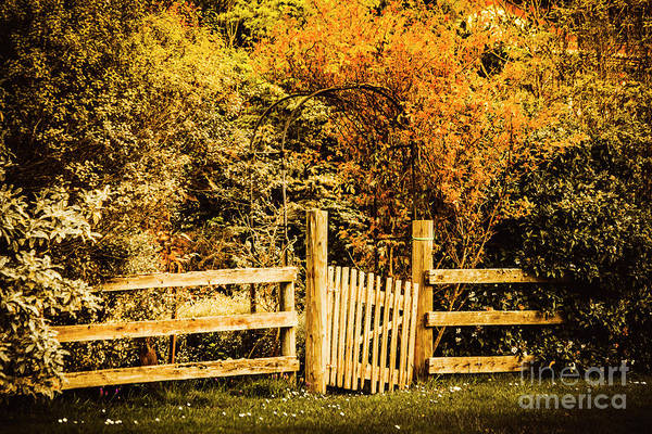 Timbers Photograph - Rickety Countryside by Jorgo Photography - Wall Art Gallery