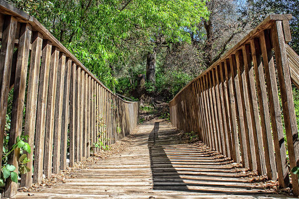 Photograph - Rickety Old Bridge by Alison Frank