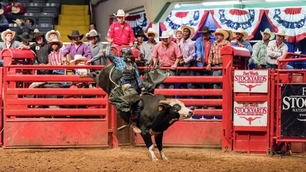Wall Art - Photograph - Ride Em Cowboy - #1 by Stephen Stookey