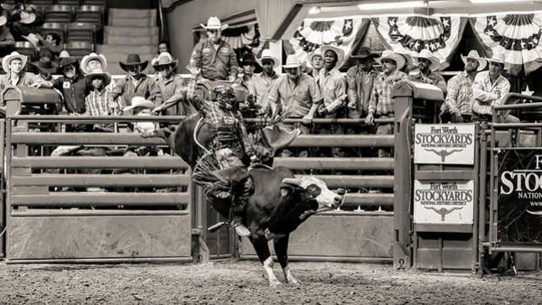 Wall Art - Photograph - Ride Em Cowboy - #2 by Stephen Stookey