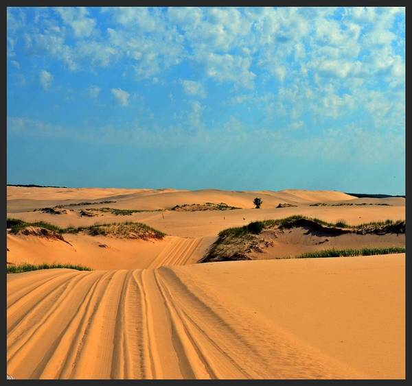 Photograph - Ride The Dunes  by Randy J Heath