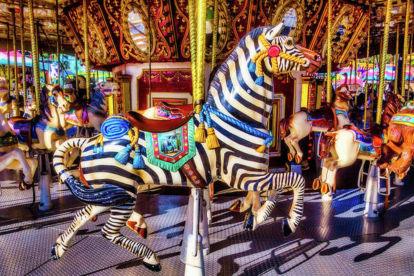 Photograph - Ride The Zebra by Garry Gay