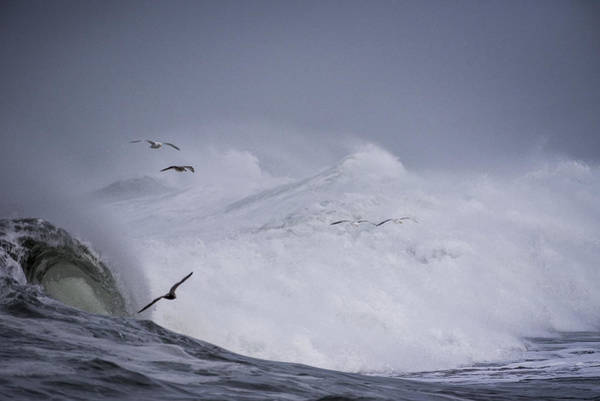 Photograph - Riders On The Storm by Robert Potts