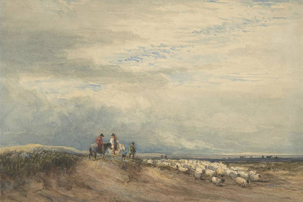 Drawing - Riders With Sheep Near An Estuary by David Cox