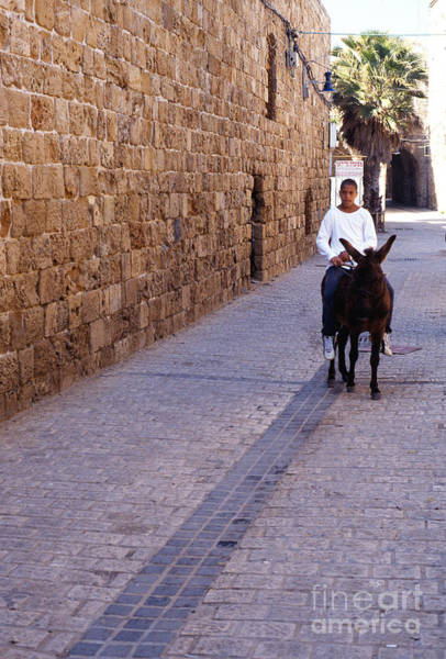 Wall Art - Photograph - Riding A Donkey by Thomas R Fletcher