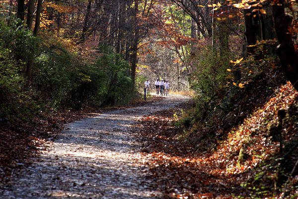 Photograph - Riding Bikes On Park Trail In Autumn by Emanuel Tanjala
