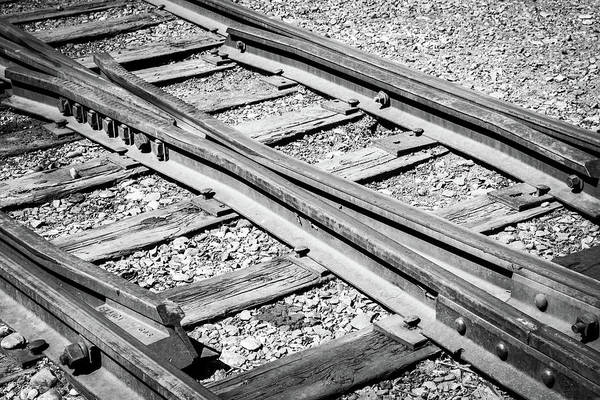 Photograph - Riding The Rail by Colleen Coccia