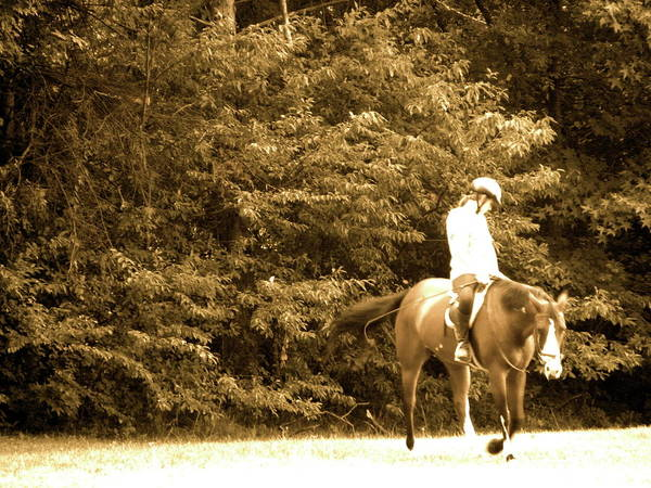 Bradley Smith Photograph - Riding Through by Bradley Smith