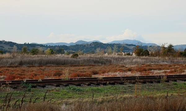 Photograph - Right Side Of The Tracks  by Christy Pooschke