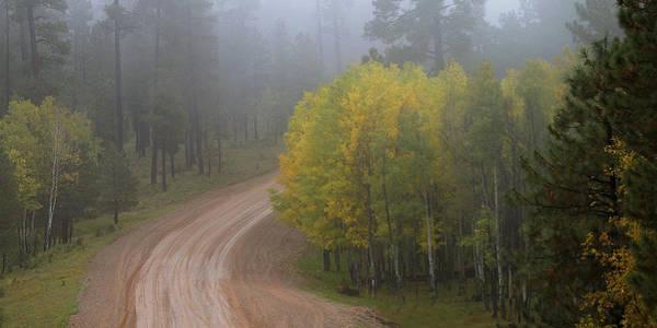 Photograph - Rim Road by Matalyn Gardner