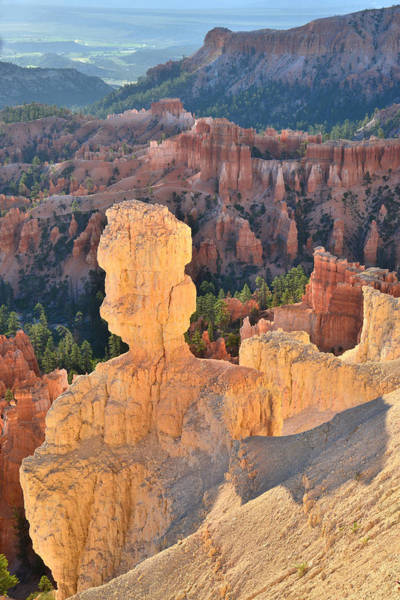 Photograph - Rim Trail At Inspiration Point by Ray Mathis