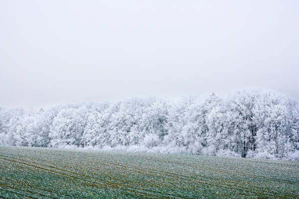 Photograph - Rime-ice Covered Trees by Alexander Kunz