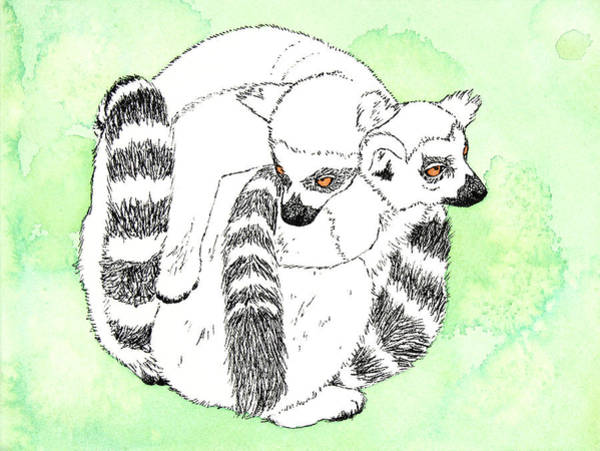 Ring-tailed Lemur Painting - Ring-tailed Lemur Huddle by Michelle Wang