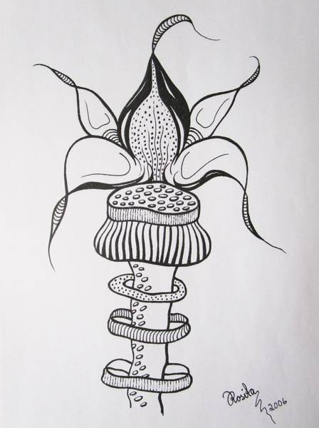 Drawing - Ringed by Rosita Larsson