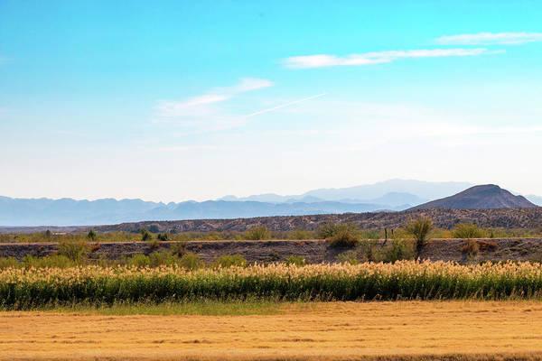 Photograph - Rio Grande Flood Plain by SR Green