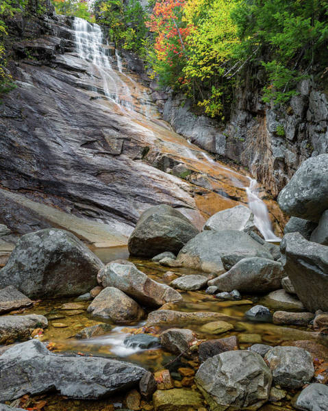 Photograph - Ripleys Falls by Bill Wakeley