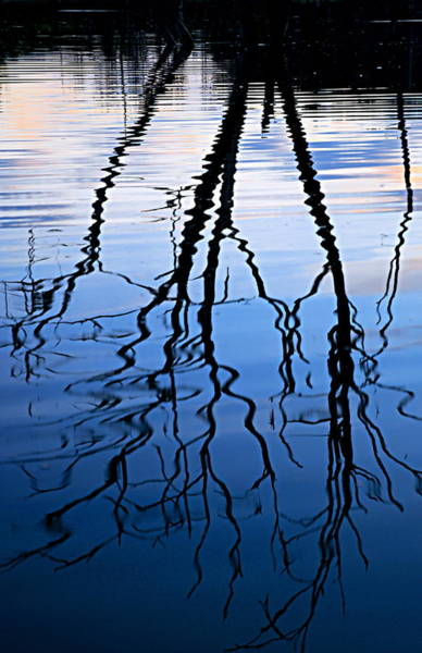 Photograph - Rippled Reflections by Larry Ricker