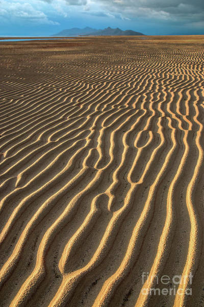 Photograph - Ripples In Late Sunlight by Spencer Baugh