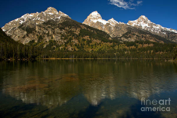 Photograph - Ripples In Taggart Lake by Adam Jewell